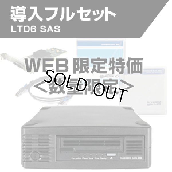 画像1: 【WEB限定】Tandberg Data LTO6 SAS HHシングルドライブ 導入フルセット 3535他 (1)